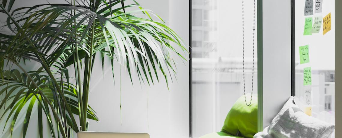 Freelance : se donner les moyens de réussir grâce à un site web